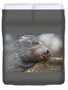 Galapagos Sea Lion Sleeping Duvet Cover