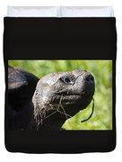 Galapagos Tortoise Galapagos Islands National Park Santa Cruz Island Duvet Cover