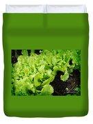 Garden Fresh Baby Lettuce And Lady Bug Duvet Cover