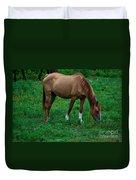 Gazing Horse Duvet Cover