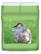 Gentle Touch Duvet Cover
