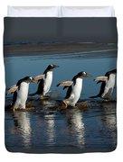 Gentoo Penguins Walking Duvet Cover by Hiroya Minakuchi