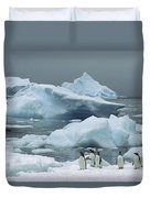 Gentoo Penguins With Icebergs Antarctica Duvet Cover