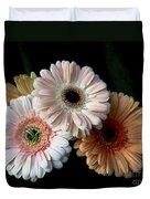 Gerbera Daisy   7302 Duvet Cover