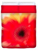 Gerbera Daisy Abstract Duvet Cover