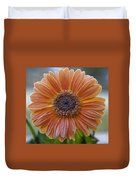 Gerbera Daisy Covered In Frost Duvet Cover