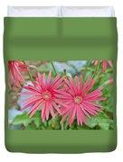 Gerbera Jamesonii / Pink Daisy Flowers Duvet Cover