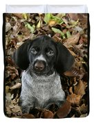 German Wire-haired Pointer Puppy Duvet Cover