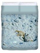 Ghost Crab Duvet Cover