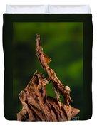 Ghost Or Dead Leaf Mantis Duvet Cover