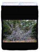Ghost Trees 1 Duvet Cover