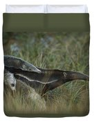 Giant Anteater And  Young In Cerrado Duvet Cover