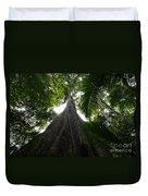 Giant Cashew Tree Amazon Rainforest Brazil Duvet Cover