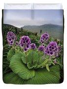 Giant Daisy In Full Bloom Campbell Duvet Cover