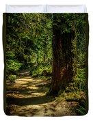 Giant Douglas Fir Trees Collection 2 Duvet Cover