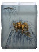 Giant Kelp On The Beach Duvet Cover