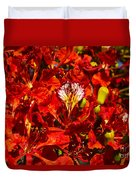 Giant Poinciana Blooms Duvet Cover