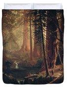 Giant Redwood Trees Of California Duvet Cover