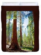 Giant Sequoias In Mariposa Grove In Yosemite National Park-california Duvet Cover