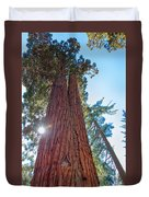 Giant Sequoias Duvet Cover