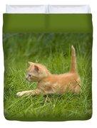 Ginger Tabby Kitten Duvet Cover