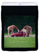 Giraffe. Animal Studies Duvet Cover
