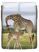 Giraffe Nuzzling Her Nursing Calf Duvet Cover