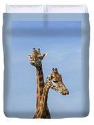Giraffes 1 Duvet Cover