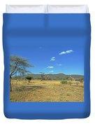 Giraffes In Samburu National Reserve Duvet Cover