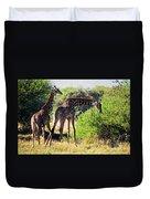 Giraffes On Savanna Eating. Safari In Serengeti Duvet Cover