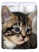Gizmo The Kitten Duvet Cover