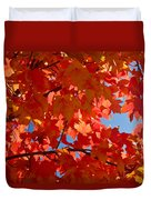 Glowing Fall Maple Colors 3 Duvet Cover