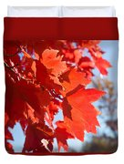 Glowing Fall Maple Colors 4 Duvet Cover