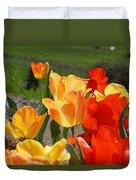 Glowing Sunlit Tulips Art Prints Red Yellow Orange Duvet Cover