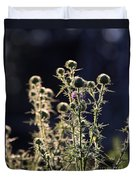 Glowing Thistle - 2 Duvet Cover