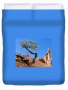 Gnarled Pine In Bryce Canyon Utah Duvet Cover