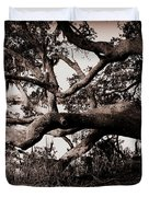 Gnarly Limbs At The Ashley River In Charleston Duvet Cover