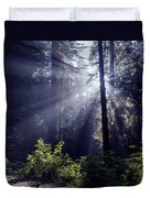 God Rays Through The Fog Duvet Cover