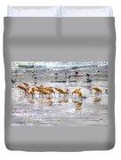 Godwits At San Elijo Beach Duvet Cover