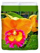 Gold And Pink Orchid At Maerim Orchid Farm In Chiang Mai-thailan Duvet Cover