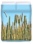 Gold Harvest Blue Sky Duvet Cover