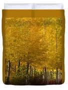 Golden Aspens Duvet Cover by Don Schwartz