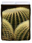 golden barrel cactus Mexico Duvet Cover