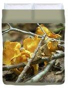 Golden Chanterelle - Cantharellus Cibarius Duvet Cover