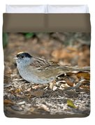 Golden-crowned Sparrow Duvet Cover