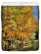 Golden Fenceline Duvet Cover