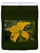 Golden Lily Sway 2013 Duvet Cover