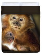 Golden Lion Tamarin Mother And Baby Duvet Cover