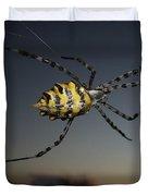Golden Orb Web Spider Duvet Cover