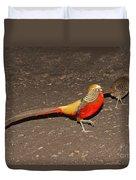 Golden Pheasant Pair Duvet Cover